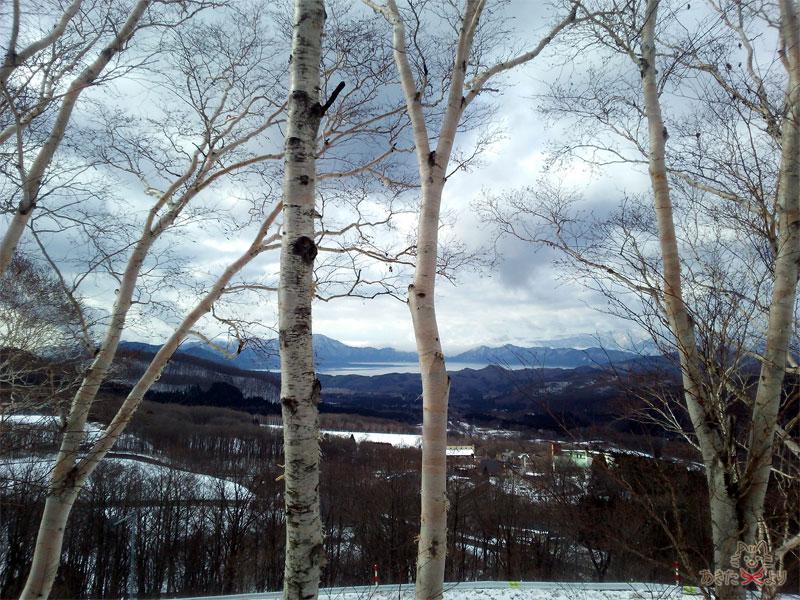 手前に白樺が映り、奥の方に雪がうっすら積もった田沢湖が見える
