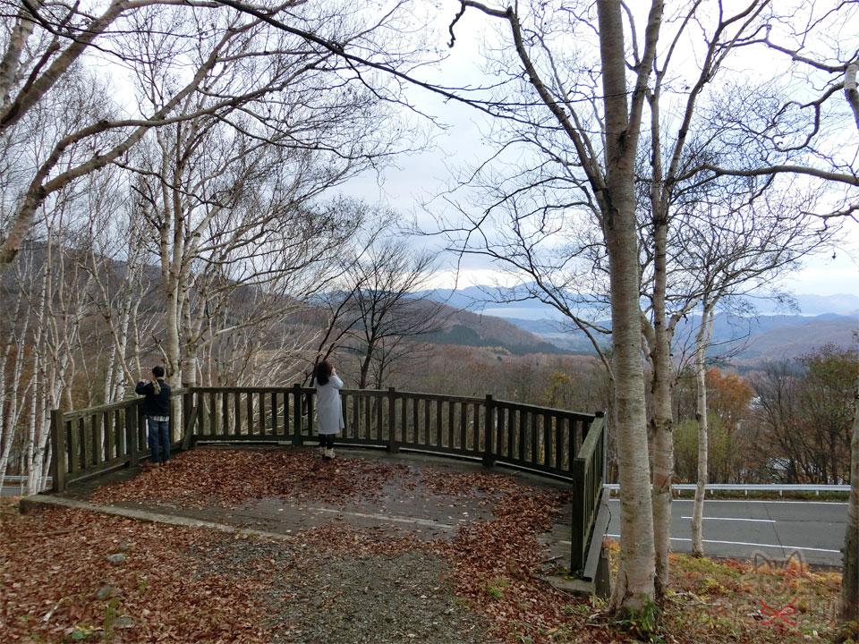 東屋より少し下の方にも展望デッキがあり、秋なのでほとんど葉っぱが散っているのもあって田沢湖が良く見える。
