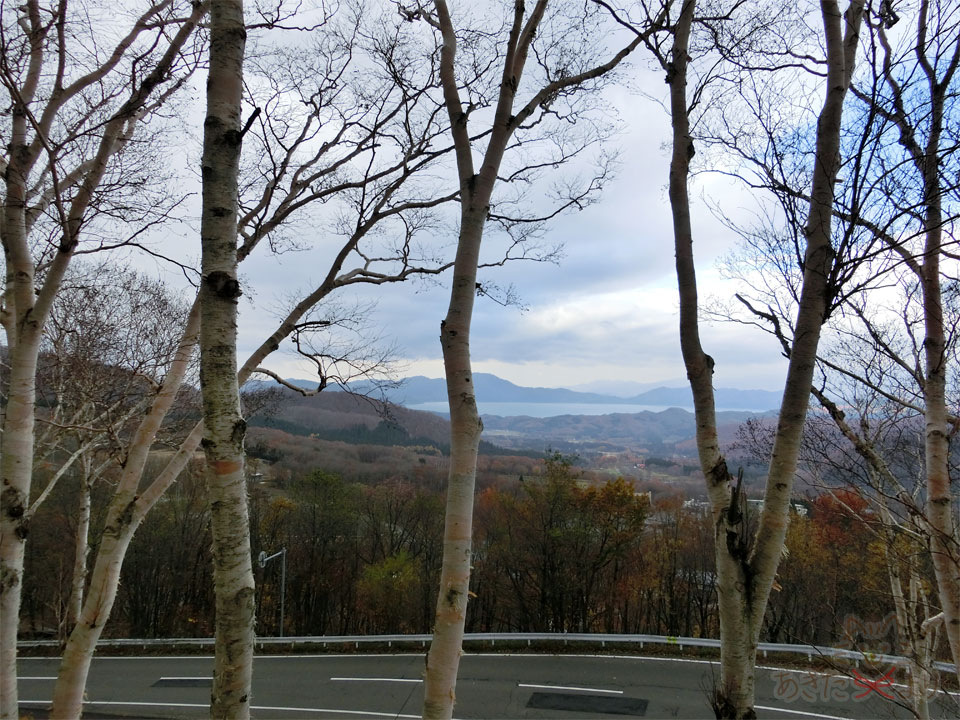 すっかり葉が散った秋の哀愁漂う白樺と田沢湖の景色