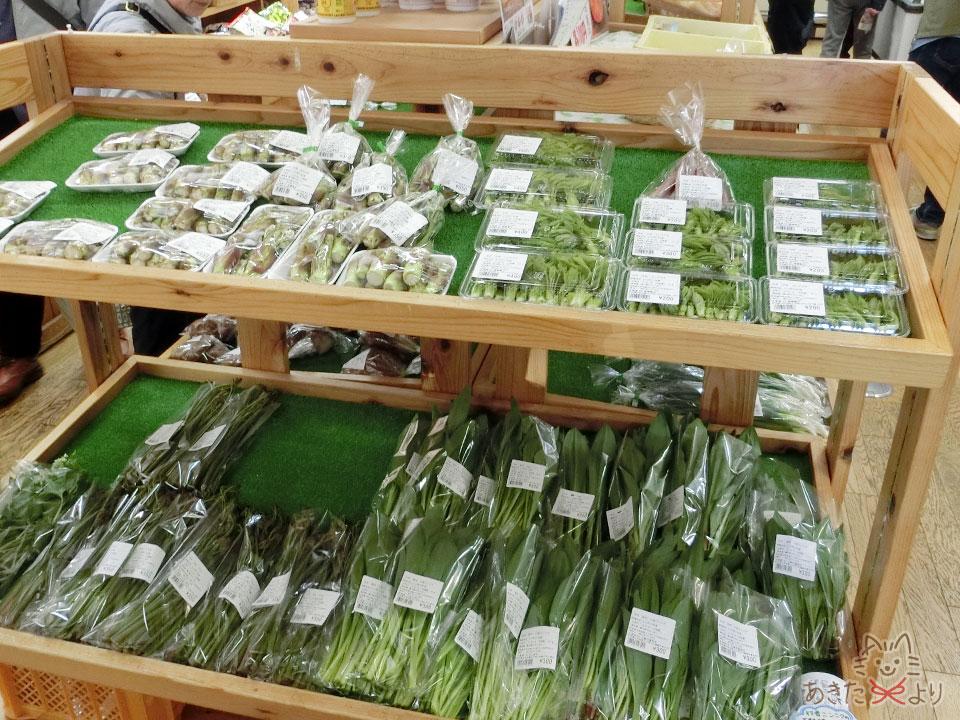 産直コーナーの棚にたくさんの山菜が並んでいる様子