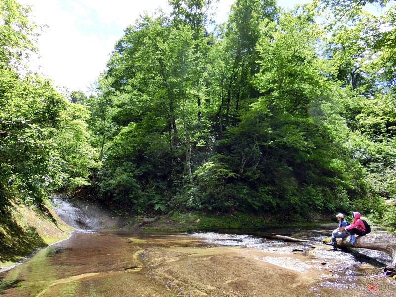玉川分岐にあった流木に座って休んでいる様子。写真左の小さな滝のようなところが玉川縦走コースで、右に行くとウサギ滝。