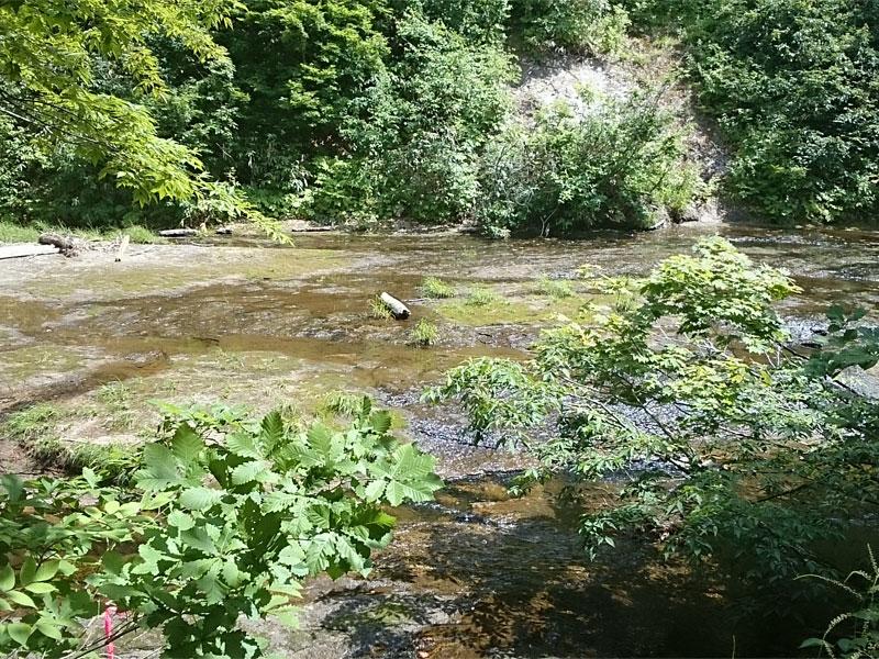 赤水と桃洞の滝の分岐点の川、深いところもあるが、岩の上をうっすら水が流れている感じ