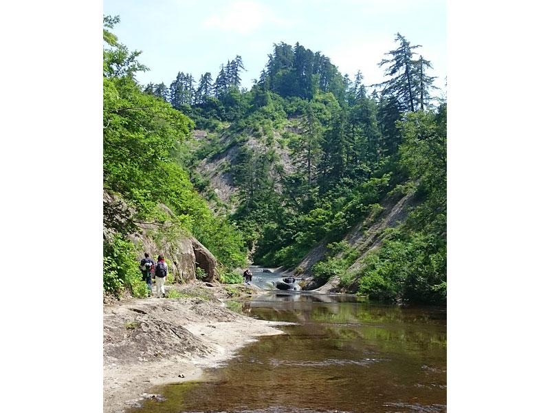 川の浅い部分は、まるで土砂降りの道路のように水が流れている