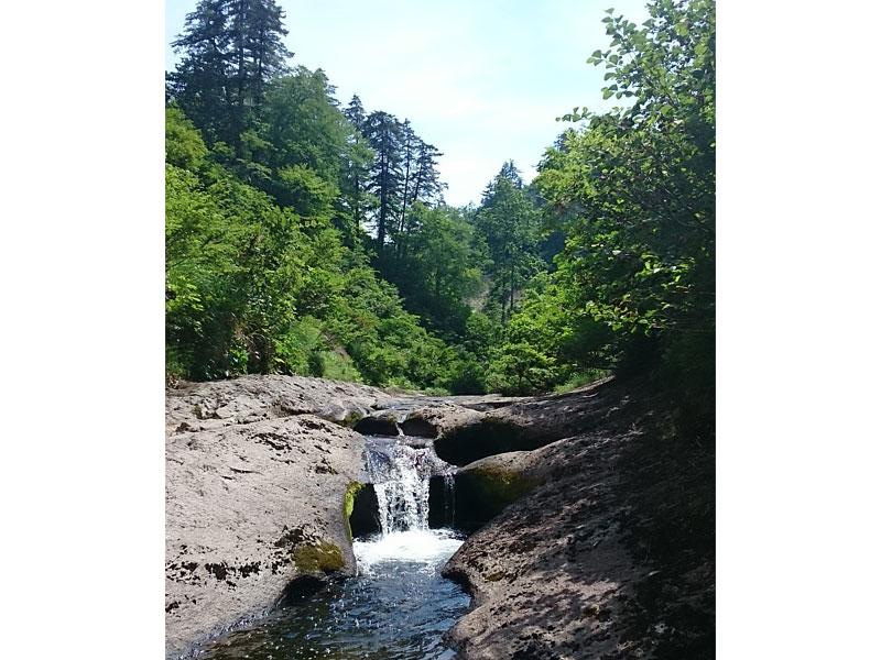 段々になった小さい滝