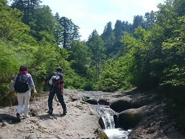 小さい滝の横をガイドさんと歩く様子