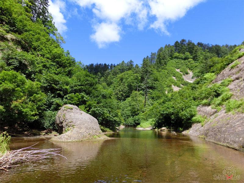 滝の反対側の景色、川と森が広がる