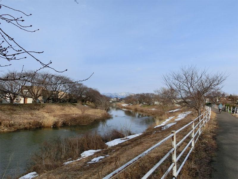 太平川の堤防から望む雪化粧された鳥海山。