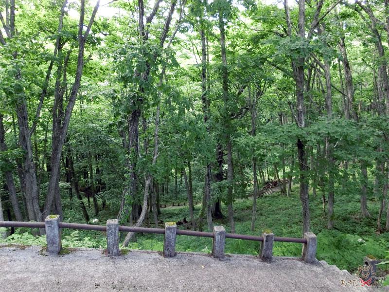 木々の中にある遊覧船乗り場へ続く階段の最初のところ