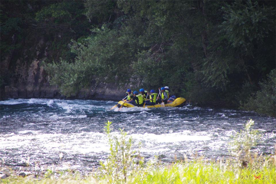 川の流れが少し急で岸にボートがぶつかっている様子。