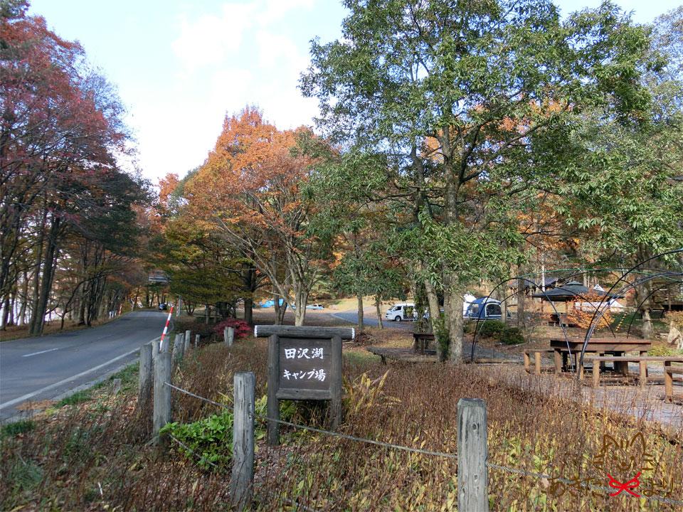 道路沿いにある『田沢湖キャンプ場』の看板。