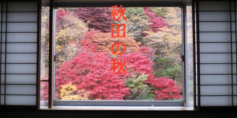 旅館の窓枠に、真っ赤な紅葉